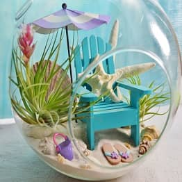 Beach Glass Terrarium
