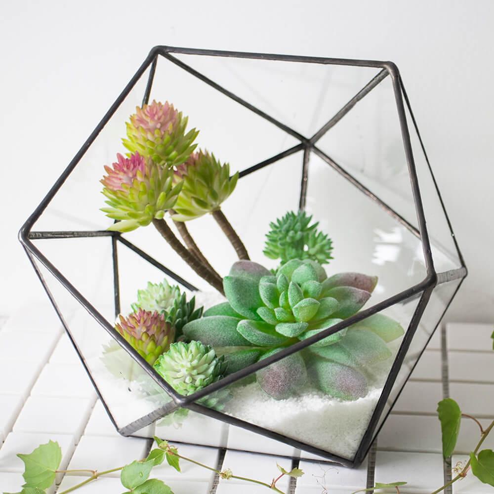 Retangular Black Glass Terrarium