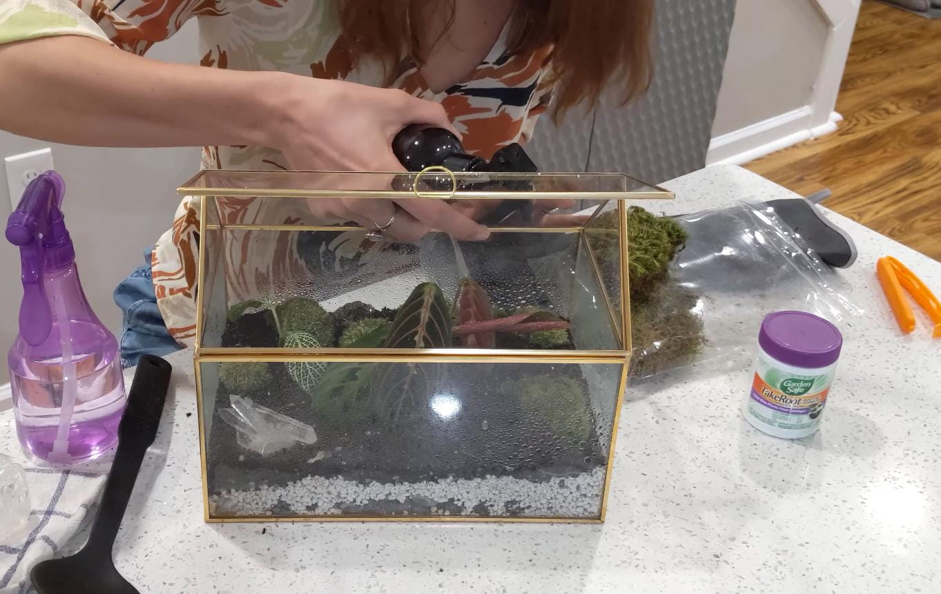DIY Mini Fairy Glass Terrarium