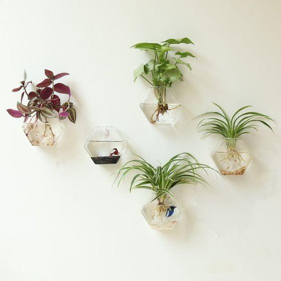 Glass Terrarium Planters