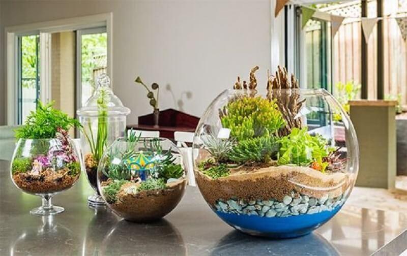 different types of glass terrarium