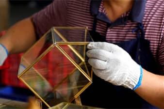 Terrarium Inspection