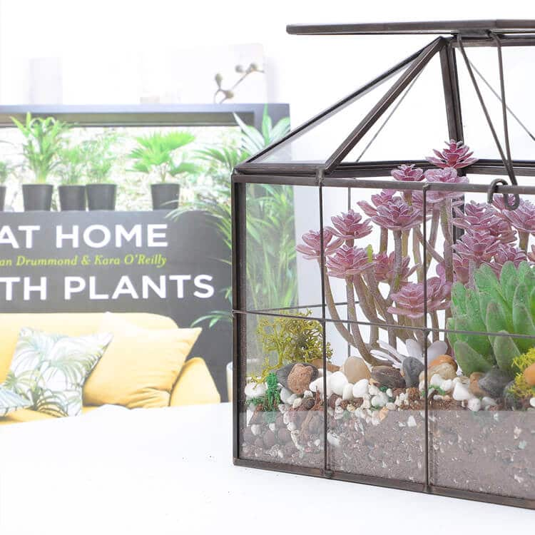 1. Succulent Terrarium for Home Design