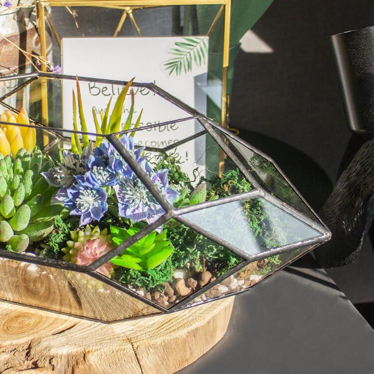 2. Succulent Terrarium for Garden