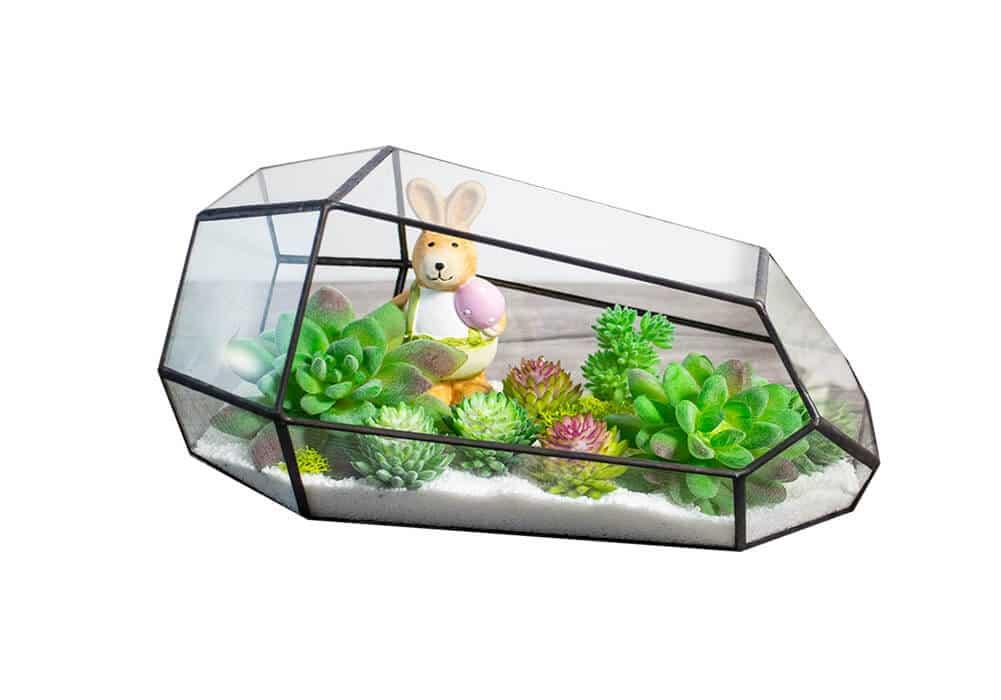 Garden Succulent Terrarium CA-PQ006