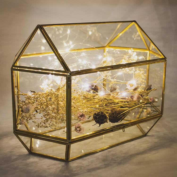 Glass Terrarium Box 2020