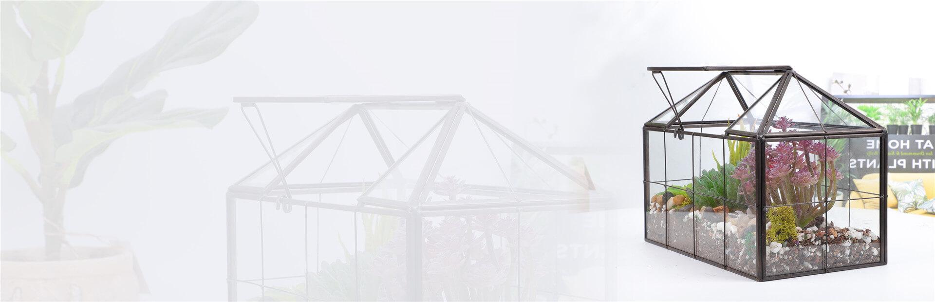glass terrarium banner