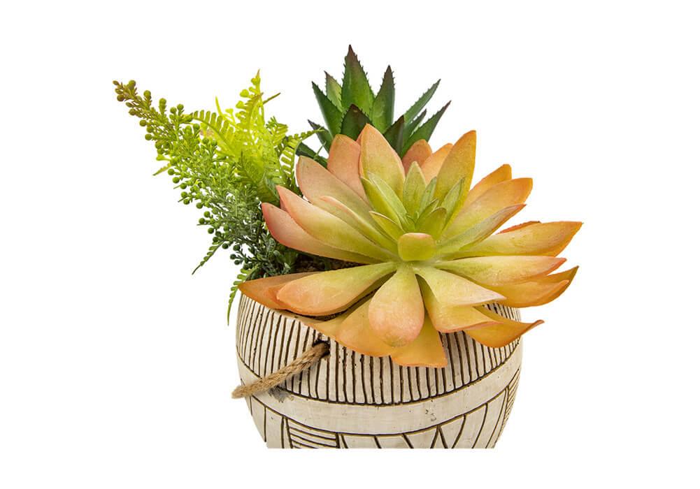 Artificial Succulent Plants CAFEN20034