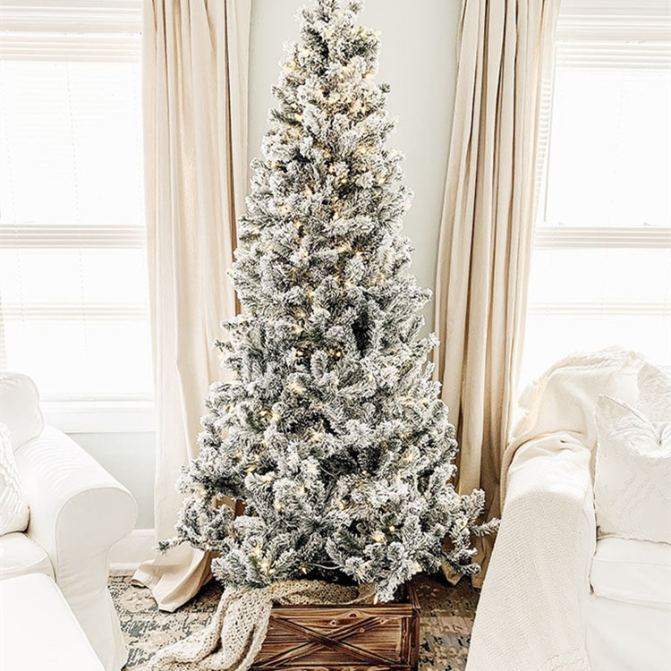 Christmas Trees for Home Design