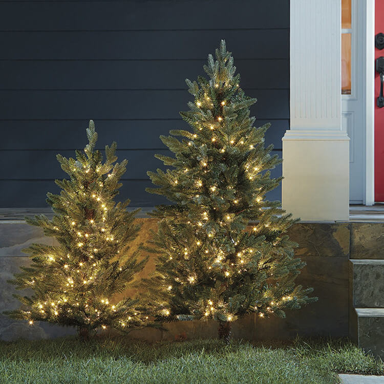 Christmas Trees for Outdoor Decor