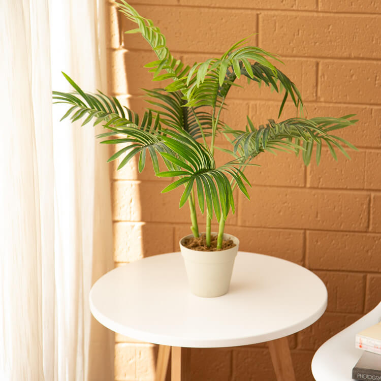 Decorative Artificial Trees on Tabletop