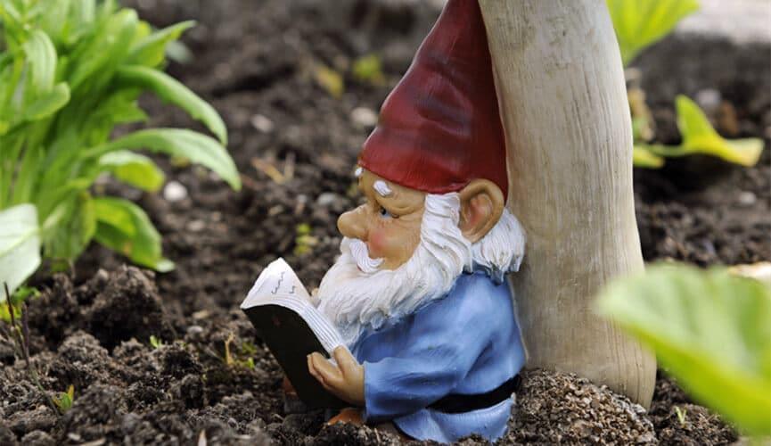 Garden Gnomes for Garden Decor