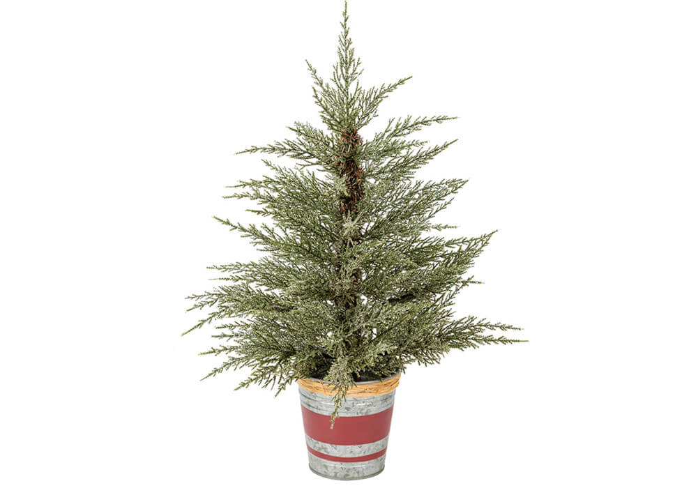 Potted Christmas Tree CA20YHV6060
