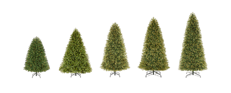 Christmas Trees Height