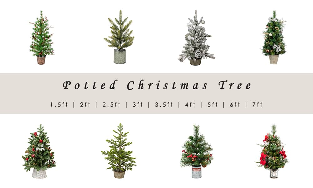 Potted Christmas Tree Style
