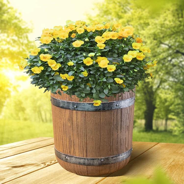 Outdoor Flower Pot