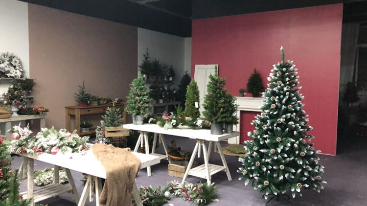Co-Arts Showroom for Christmas Trees 1