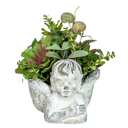 Face Planter with Artificial Plants Pic