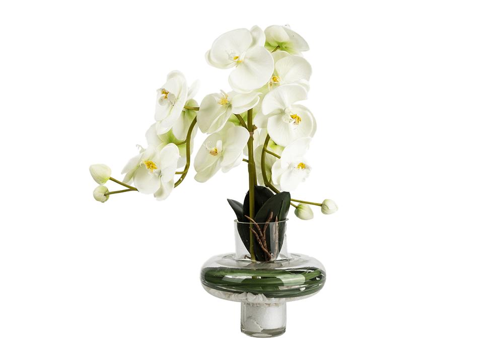 Phalaenopsis Faux Orchid Plant CABHG20010