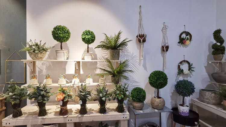 Various Artificial Plants by Co-Arts